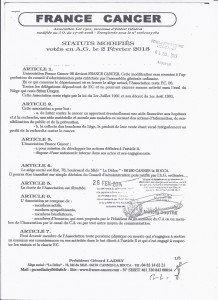 Statuts 1 page